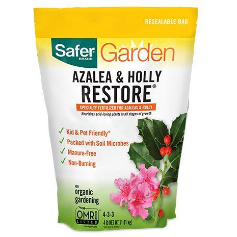 azalea and holly restore