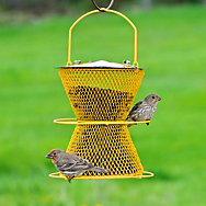 NO/NO® Designer Double with Perch Ring Wild Bird Feeder
