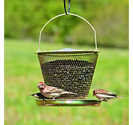 NO/NO® Tray Brass Wild Bird Feeder