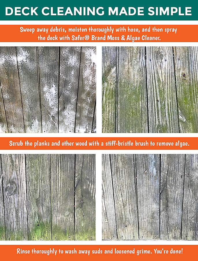 algae cleaning wood deck instructions