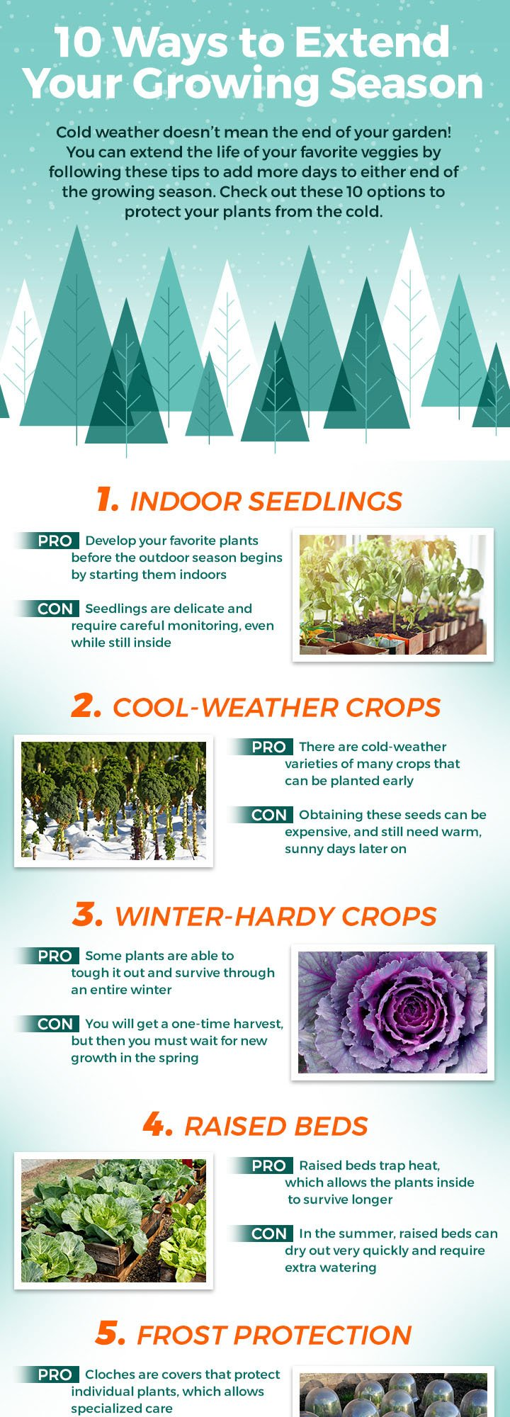 Extend Your Growing Season, part 1