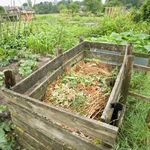 Recipes for Great Compost
