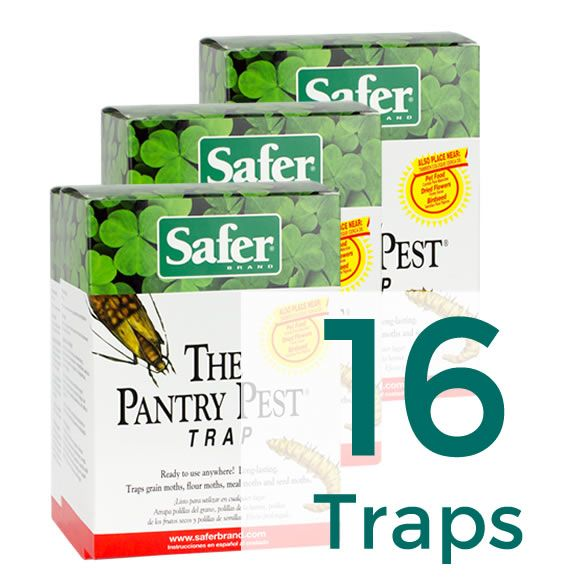 The Pantry Pest 174 Pantry Moth Trap 16 Traps Safer 174 Brand