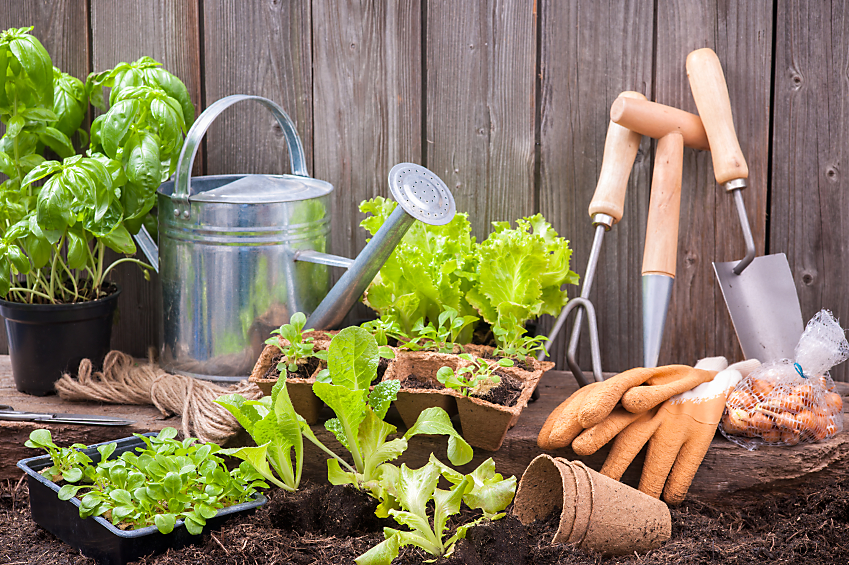 Equipment And Supplies For Straw Bale Gardening