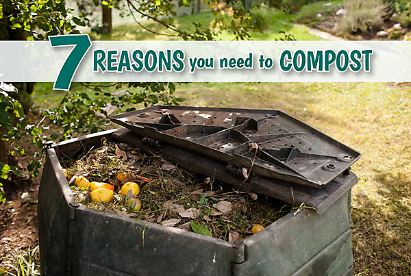 7 Reasons Compost