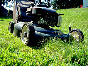 Rather than bag your lawn clippings, invest in a lawn mowers that immediately mulches and spreads clippings.