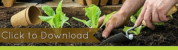 Download free guide on how to create an organic garden