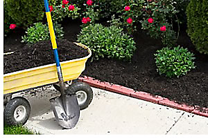 Mulch, along with a sunlight-blocking layer of paper can be a tremendously effective weed control method.