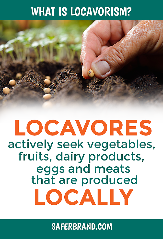What are locavores? What is Locavorism?
