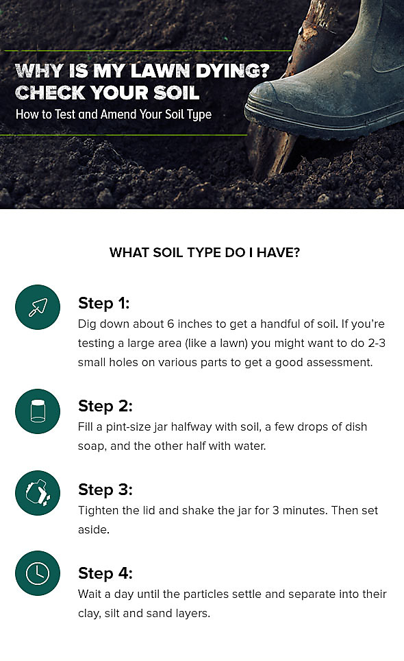 Why Is My Lawn Dying How To Test And Amend Your Soil