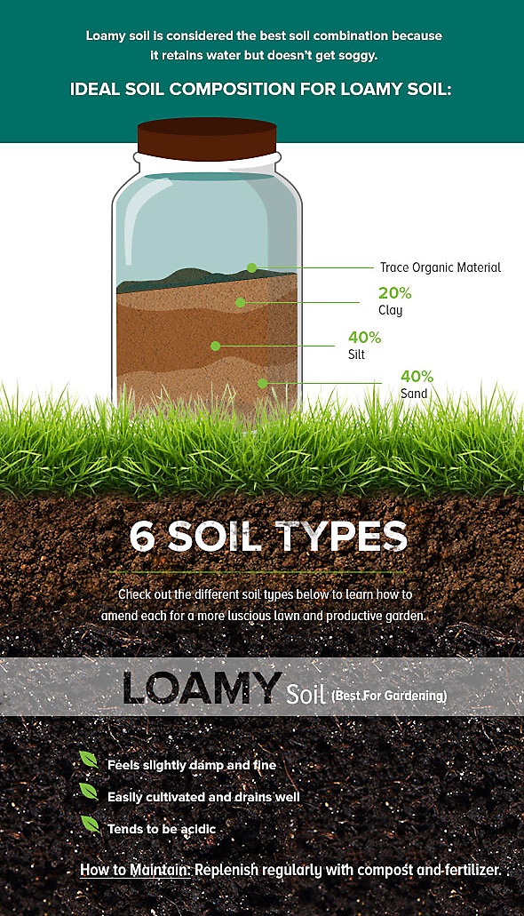 Why is my lawn dying how to test and amend your soil for Garden soil types