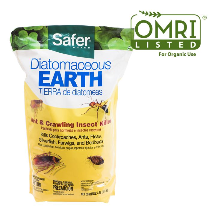 How To Clean Up Diatomaceous Earth