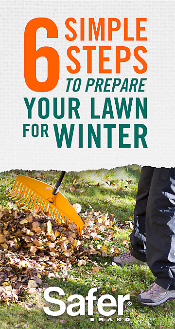 prepare yard for winter