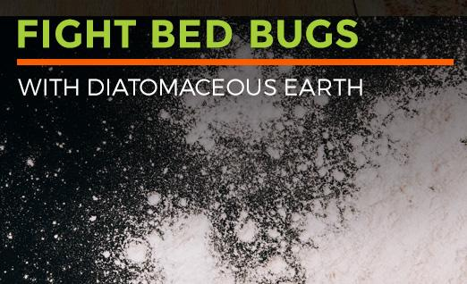 Fight Bed Bugs with Diatomaceous Earth
