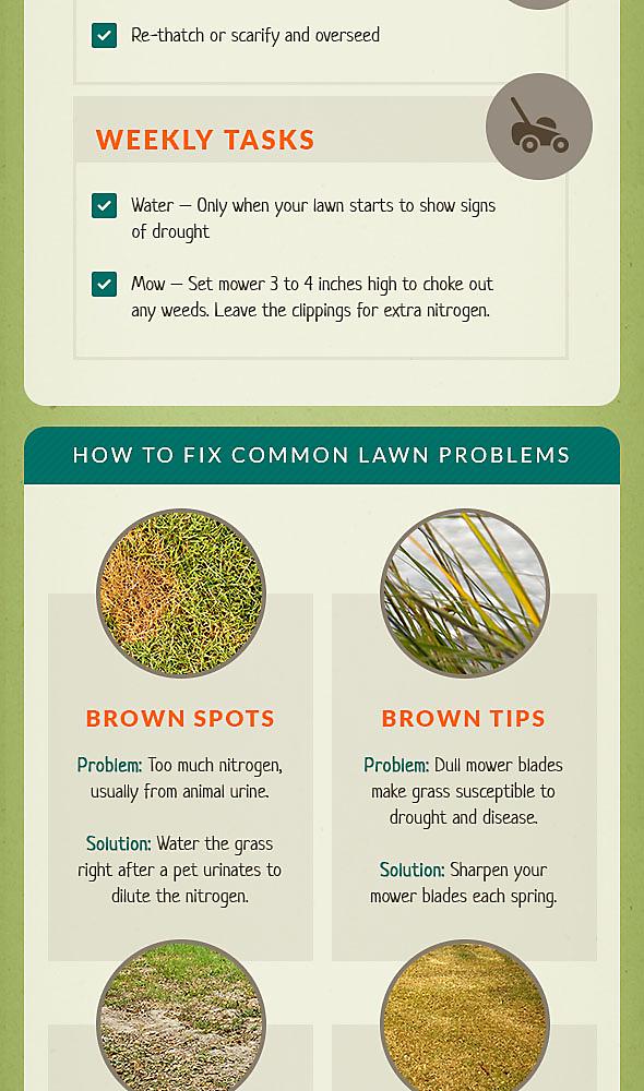 Do it yourself organic lawn care organic lawn care solutioingenieria Gallery