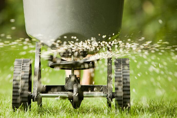 A lawn spreader distributing seed and nutrients