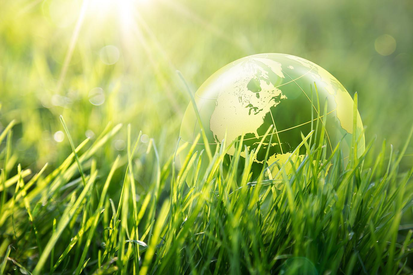 Glass globe laying in a bed of long grass