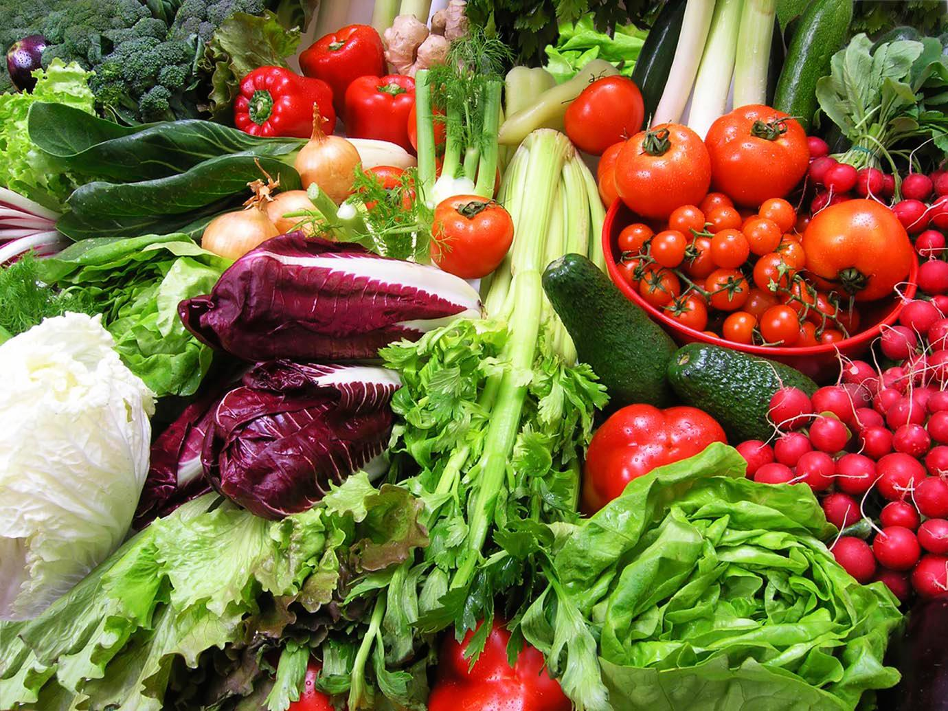 a selection of fresh organic vegetables: lettuce, tomatoes, peppers, etc