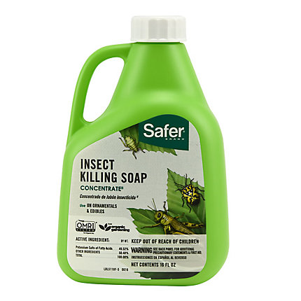 Safer Brand Insect Killing Soap