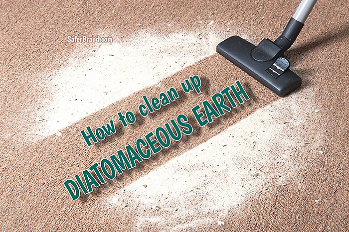 tips for diatomaceous earth clean up