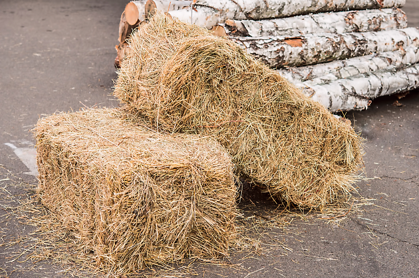 Beginners Guide To Straw Bale Gardening - Bales