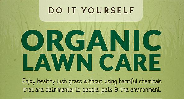 Do it yourself organic lawn care solutioingenieria Gallery